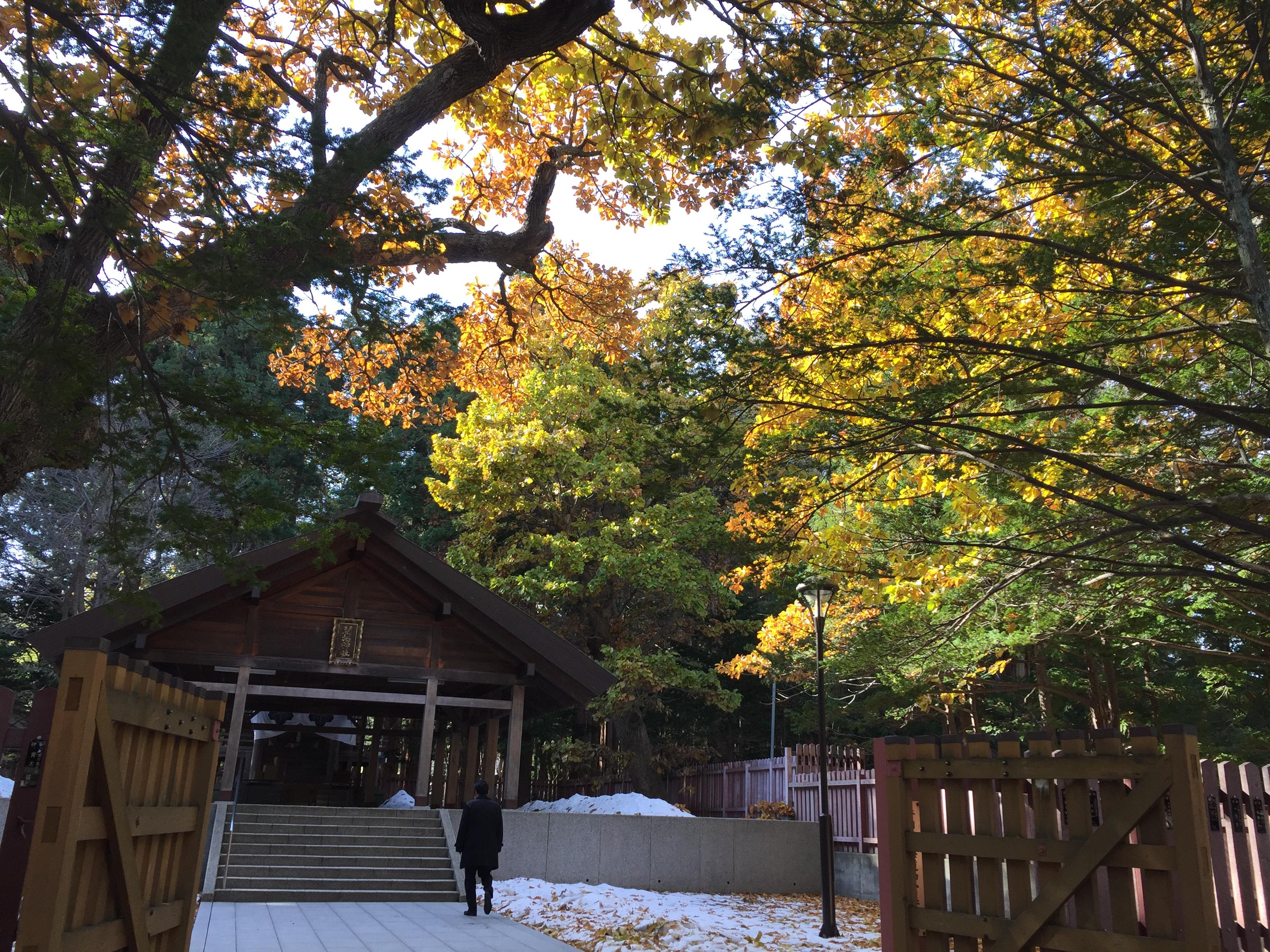2016年11月11日開拓神社@北海道神宮